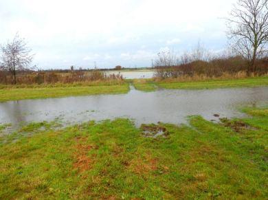 Magdalen Lane fields flooded, November 2012