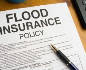 Safeguard Home Flood Insurance petition launched