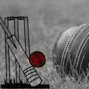 Cricket History image