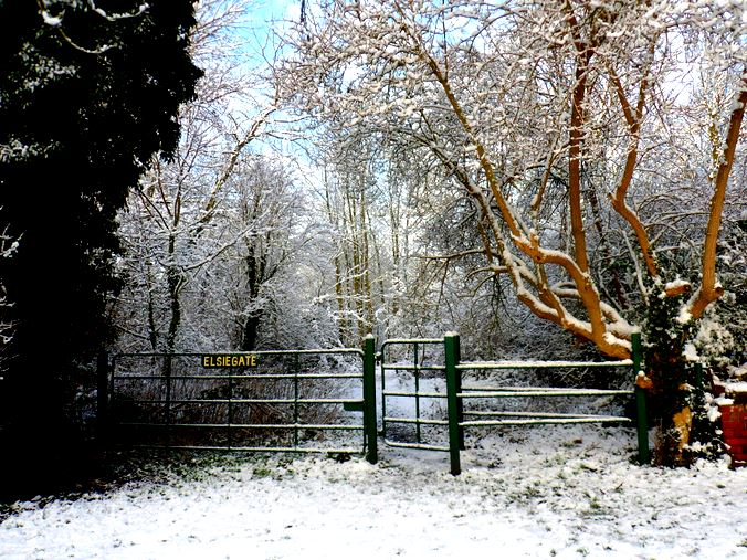 Elsie Gate field entrance - in the snow