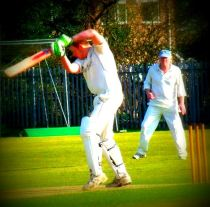 Cricket action sq