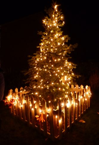 Monday 2nd December (Click Image for story behind Burstwick Christmas Tree)
