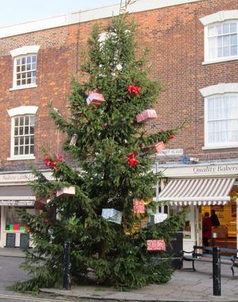 Christmas Tree 2013 daylight