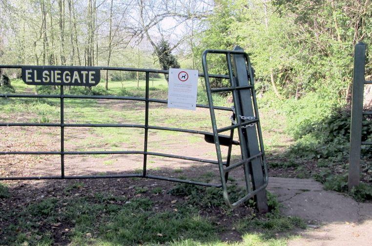 Elsie Gate - knocked April 2014