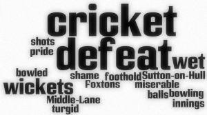 Cricket wordle defeat