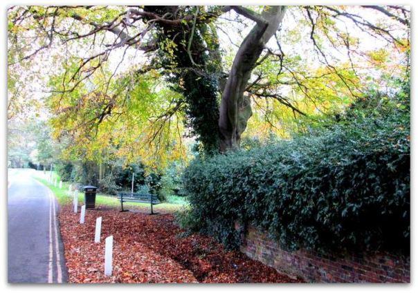 Autumn in Hedon