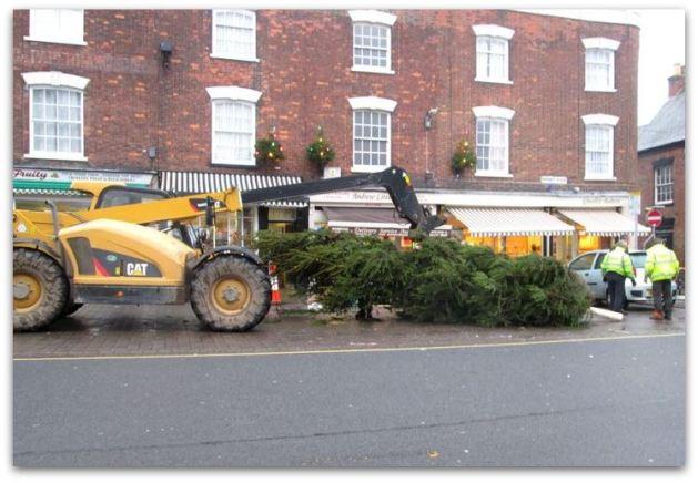Christmas Tree 2014 a