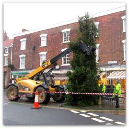 Christmas Tree 2014 c