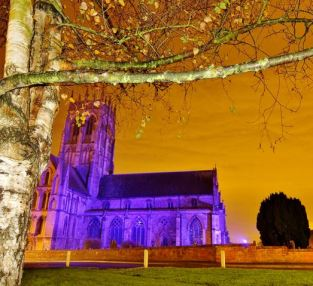 Katy Miller - purple church framed by tree Nov 2014