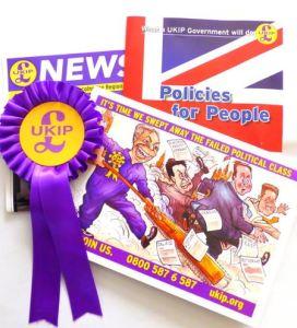 UKIP rosette leaflets