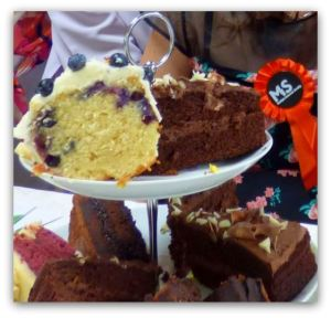 That piece of Blueberry Cake had my name on it! Yum, yum!