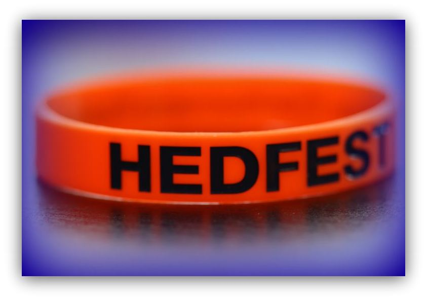 HedFest Wrist Band orange