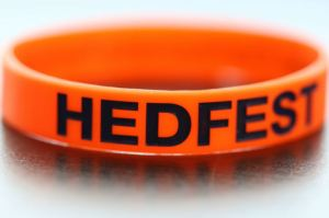 HedFest Wrist Band Orange 2