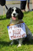 Max the dog protest