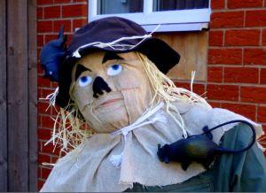 Scarecrow from Oz cu