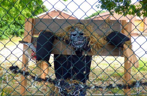 Scarecrow skeleton stocks