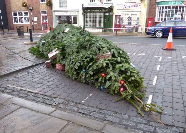 Christmas Tree fallen over