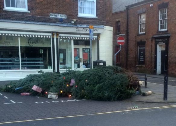 Tree fallen 7:20am