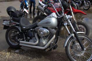 Harley 2