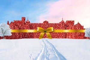 Burton Christmas wrap bow